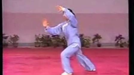 陈氏太极拳十大要论_太极拳大师的胖子多_老年人太极拳图片
