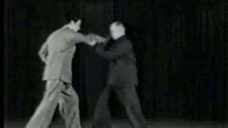 循环八式太极拳教学_杨式17式简化太极拳pdf_李占英85式太极拳2