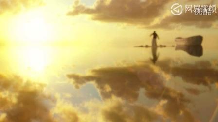 少年派这电影画面实在是太美了,如天堂一般!