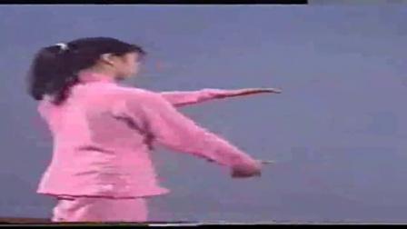 85式杨式太极拳1到11_杨式太极拳竞赛套路教学片(上)_标清id0_新绛县太极拳