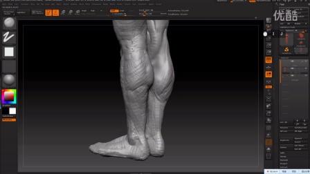 2016-11-18躯干腿部概括下