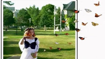 3D图片的视频相册创作绿洲之恋sxm