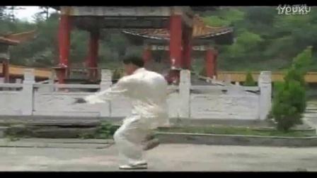 简化杨氏24式太极拳谱_85太极拳李占英_55式杨式太极剑教学