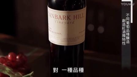 如何开始认识红葡萄酒