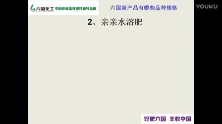 六国宁津新品(三七)