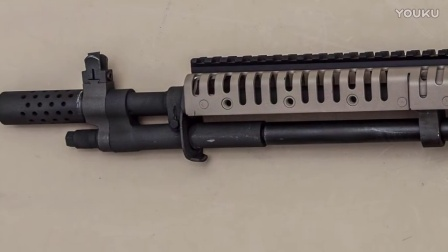 【新枪入手】中国北方工业产M14步枪与Dominion武器公司产SOCOM 18步枪