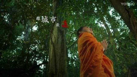 云南旅游西双版纳旅游景点望天树景区