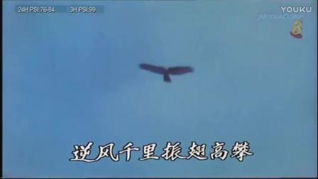 新加坡电视剧《天涯同命鸟》同名主题曲
