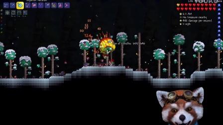 【菜鸡小分队★泰拉瑞亚】魔法向开荒 Terraria EP.14 化身小浣熊