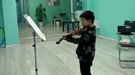 小提琴-告诉罗蒂阿姨