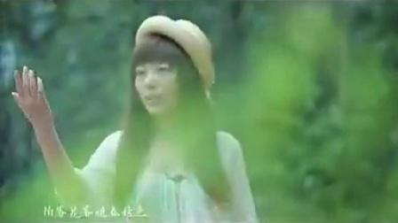 蝶恋花 - 牛奶咖啡 - QQ音乐MV