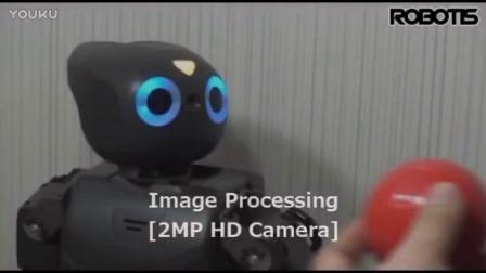 ROBOTIS Open Platform Humanoid robot, DARwIn-OP official Introduction