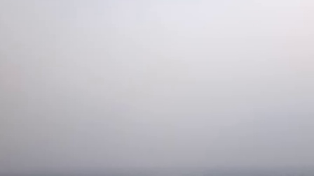 追随渤海明珠号渡轮的海鸥VID_20170103_161918