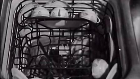 1930年  通用电气的洗碗机