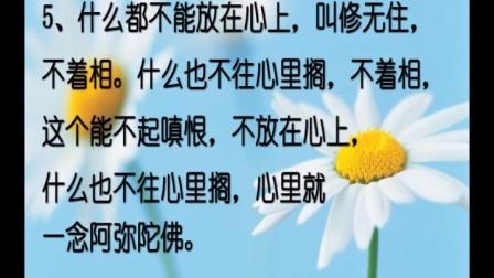 万一法师:勤修戒定慧 熄灭贪嗔痴(邢台净土寺佛七开示)