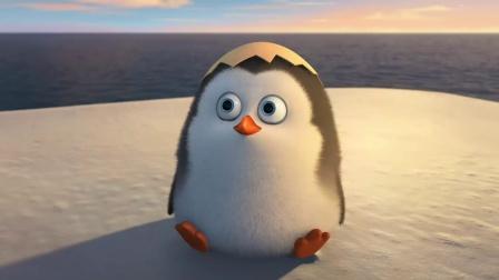 Celebrate 电影 马达加斯加的企鹅 主题曲 - UNIQ