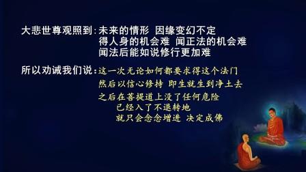佛说无量寿经 第八十六讲(智圆法师.讲述)