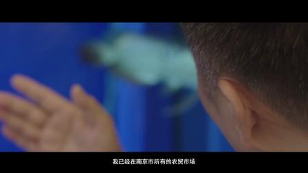 南京夜上海餐饮集团