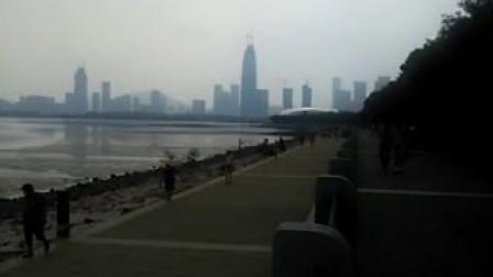 深圳红树湾
