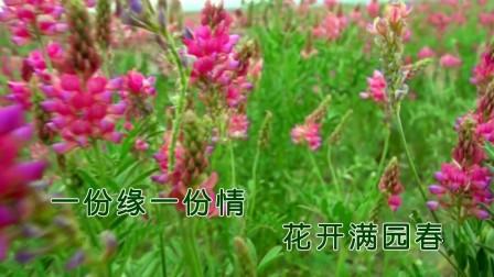 《花开满园春》(王富强作品,对唱版KTV视频)