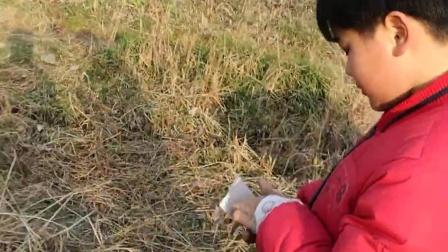 9岁11个月 康辉新年和老表们乡下燃放鞭炮(哥不是传说 不要迷恋哥)