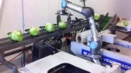 优傲机器人应用案例视频汇总 1.1.21 UR5蔬菜包装