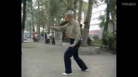 杨静太极拳48式视频_郭福厚先生传太极拳术 - 播单 - 优酷视频