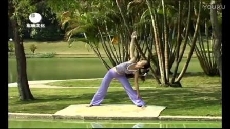 瑜伽初级教程在家练全套 减肥操廋腰廋肚子减赘肉_标清