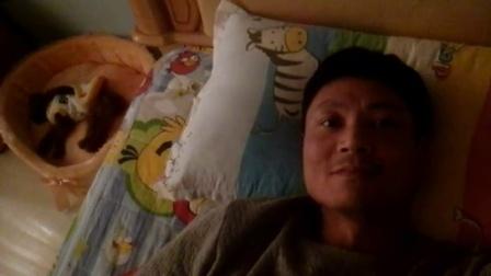 潮州帅哥经验谈:如何哄狗狗睡觉,而且睡得很沉像死猪一样
