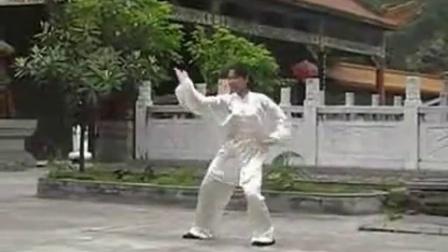 陈氏太极拳大四锤慢速24式 (王玺雯)(张群制作)_标清 (2)
