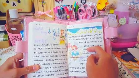 2017年一月手帐排版分享~