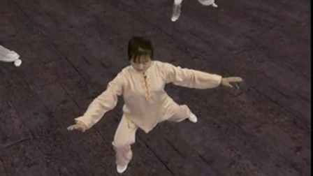 23-24吴阿敏24式太极拳招式分解教学