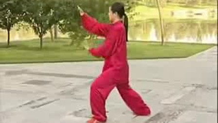 吴阿敏杨式40式太极拳教学全套背向示范-320