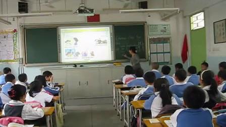 unit9 chinese new year深港版小学四年级英语优质课