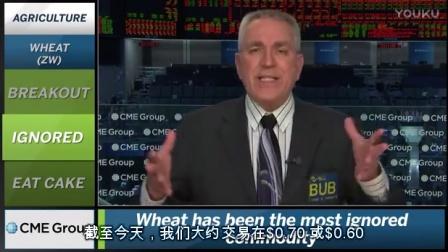 芝商所市场评论- 财经视频 2011 年1月18 (晚)