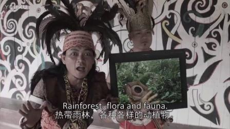马来西亚 | 捷兔跑