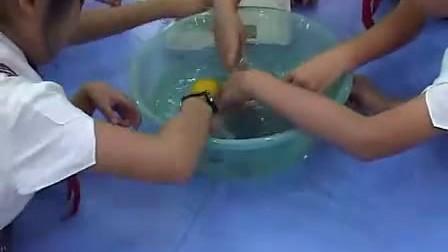 苏教版 三年级科学 把固体放入水中