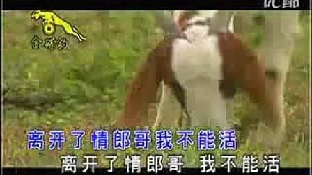 卓依婷-牧羊女之恋
