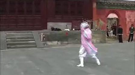武当功夫——太乙拂尘(李树青演练)