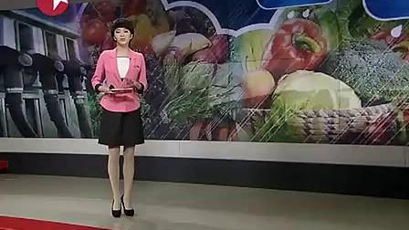 菜价走势预估:运输成本增加  果蔬价格或将小涨