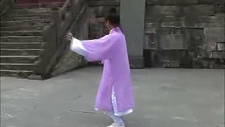 武当功夫——太乙五行拳(李树青演练)