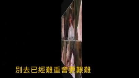 情義兩心堅【1983年電視劇《神鵰俠侶》插曲 】張德蘭主唱