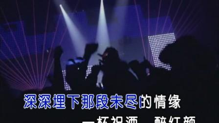 DJ冷漠-醉红颜-国语