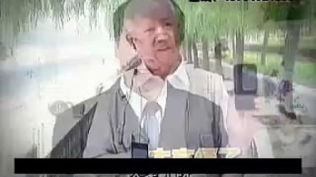 国产睿凤手机广告