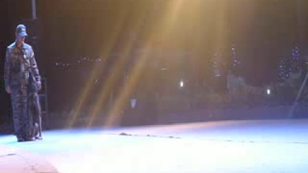 石林昆明犬网--昆明犬第二次上台表演