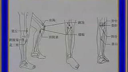 刮痧疗法-膝关节痛 QQ514155299