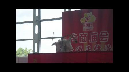 2013.10.03金光布袋戏操偶演出