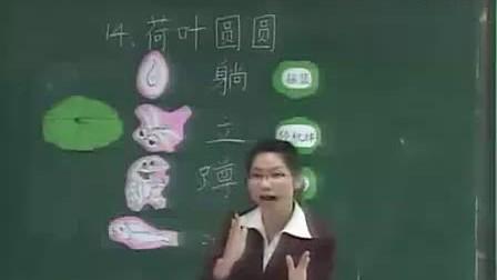 荷叶圆圆宝安区中学附属小学小学一年級語文優質課实录