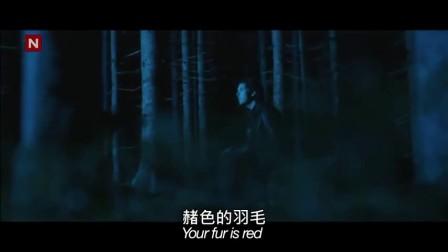 2013网络新神曲狐狸叫mv爆红 挪威喜剧档兄弟秒杀鸟叔