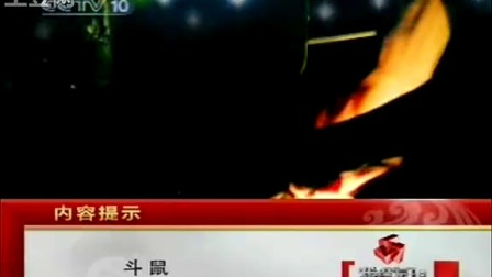 CCTV10科教频道[内容提示]
